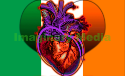 'Heart Power' by Imaginary Media Images